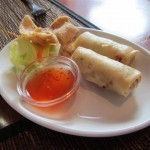 Spice and Rice Spring Rolls